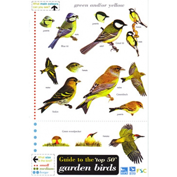 The Top 50 Garden Birds In Britain A Laminated Fold Out Chart
