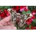 Forbes' Atlas Moth Rothschildia forbesi  (R. lebeau). Central America 10 larvae
